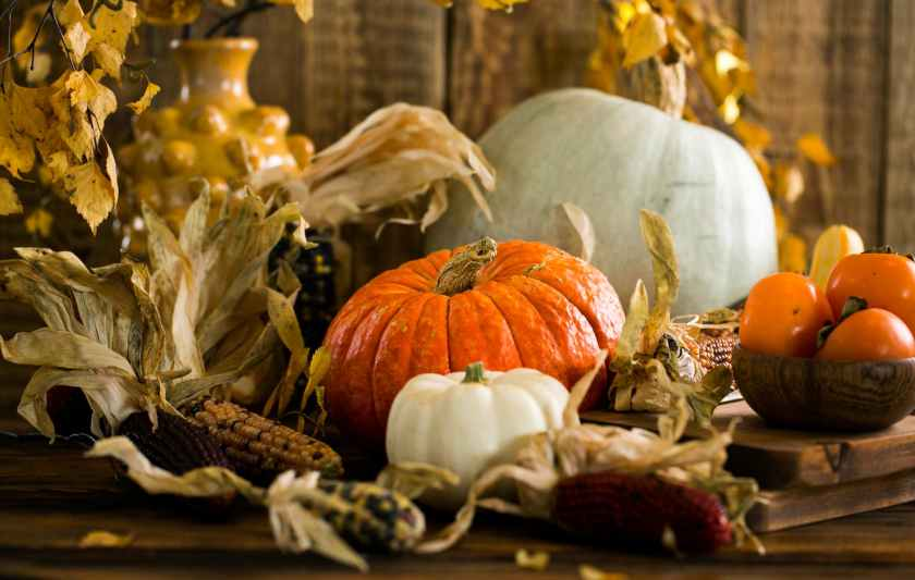 white and orange pumpkins on table